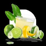menu-citrojugo-3